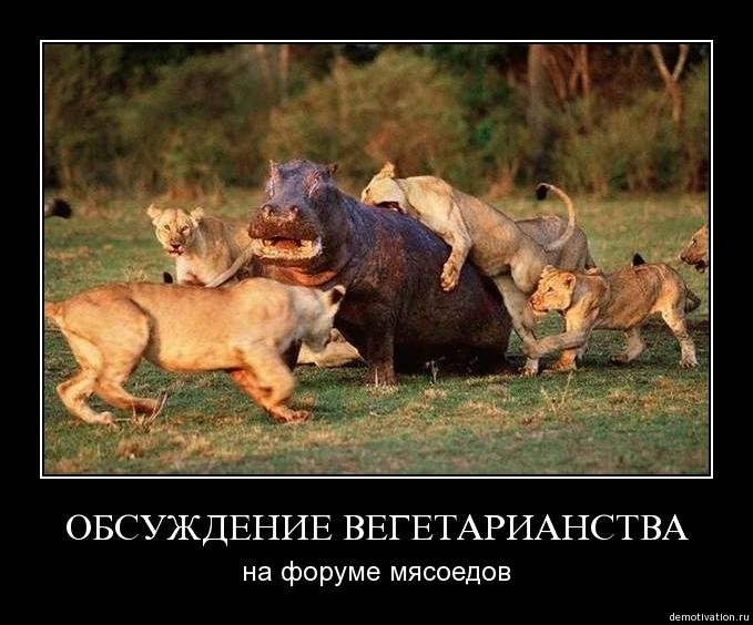 http://www.zarubezhom.com/Images/Veggi2.jpg